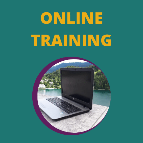 Online website maken training